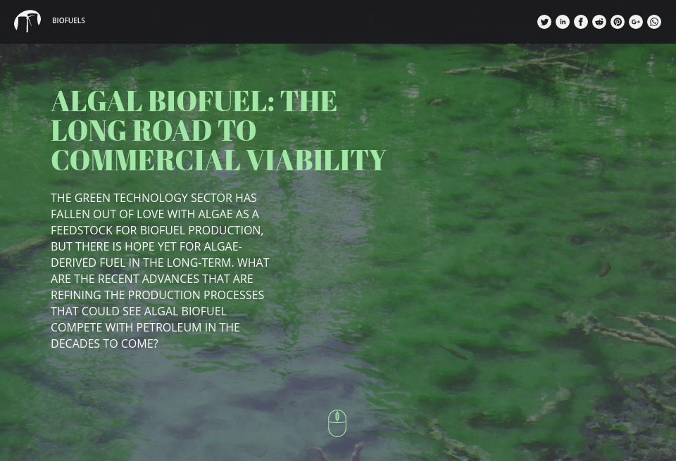 Algal biofuel: the long road to commercial viability
